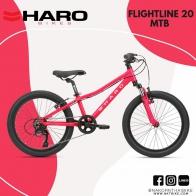 2021 Haro flightline 20
